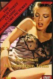 Pensionat erotik +18 film izle