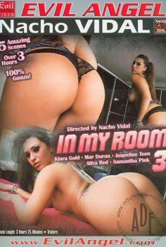 In my room vol.3 erotik film izle