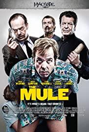 Kurye / The Mule türkçe dublaj izle