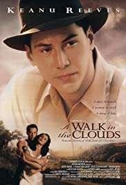 Bulutların ötesi / A Walk in the Clouds HD izle
