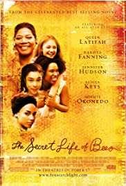 Hayatın Getirdikleri / The Secret Life of Bees HD izle